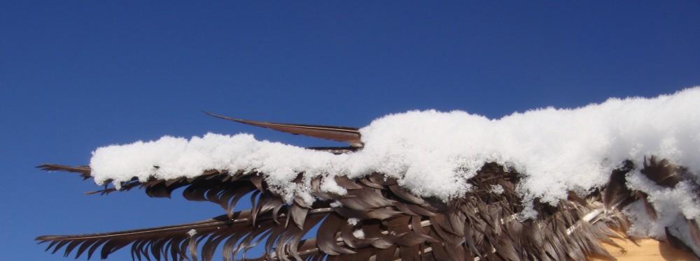 Snowflakes Edge